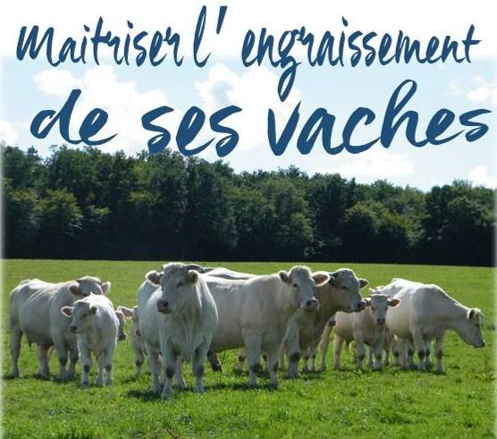 Formation FDSEA 58 : Maitriser l'engraissement de ses vaches